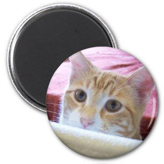cole boy 2 2 inch round magnet