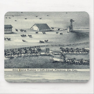 Cole Ranches Mouse Pad