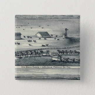 Cole Ranches Pinback Button