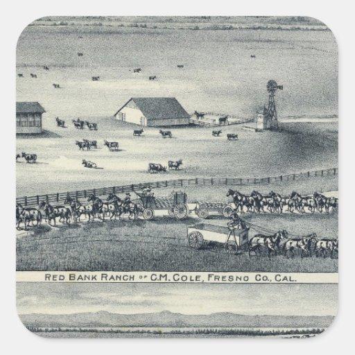 Cole Ranches Square Sticker
