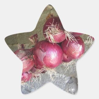 Colección colgante de la cebolla roja pegatina en forma de estrella