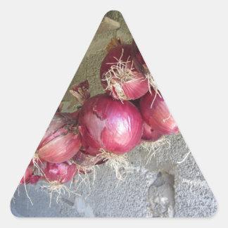 Colección colgante de la cebolla roja pegatina triangular