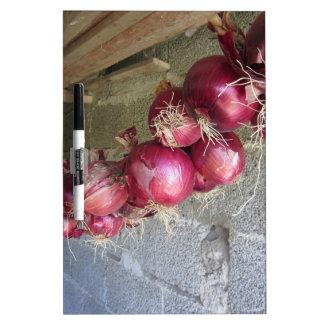 Colección colgante de la cebolla roja pizarras blancas