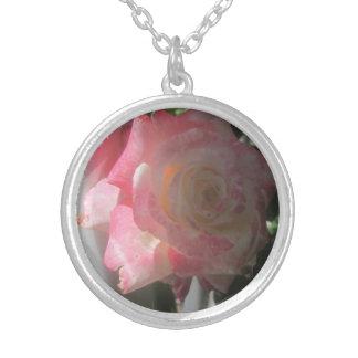 Colección color de rosa collar