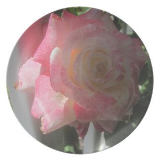 Colección color de rosa plato de comida