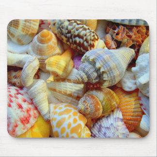 Colección colorida del Seashell Alfombrilla De Raton