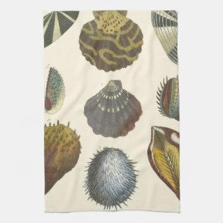 Colección de la conquiliología toalla de mano