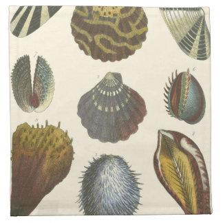 Colección de la conquiliología servilletas imprimidas