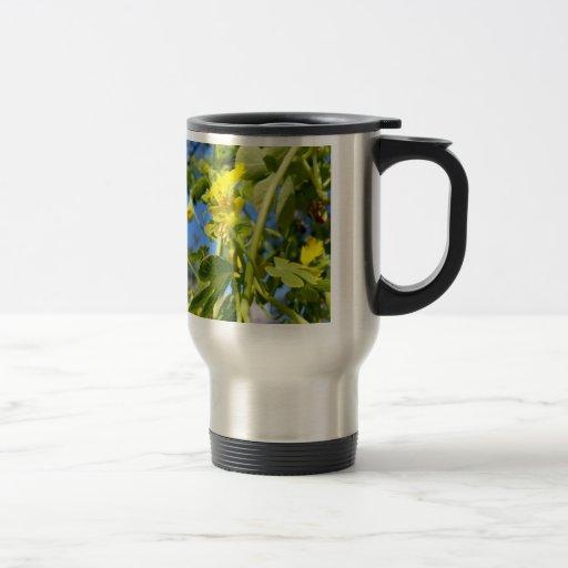 Colección de la flor de mi esposa tazas