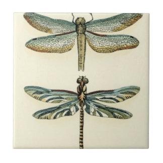 Colección de la libélula de Chariklia Zarris Azulejo Cuadrado Pequeño