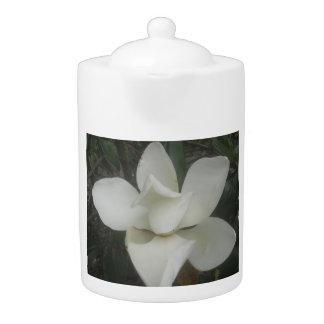 Colección de la magnolia