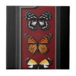 Colección de la mariposa azulejos cerámicos