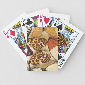 Colección de la mariposa baraja cartas de poker