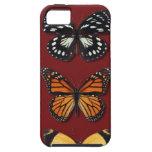 Colección de la mariposa iPhone 5 Case-Mate coberturas