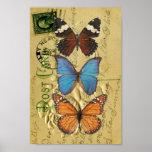 Colección de la mariposa impresiones