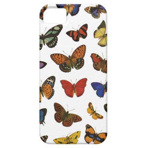Colección de la mariposa iPhone 5 fundas