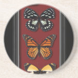 Colección de la mariposa posavasos diseño