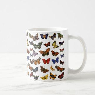 Colección de la mariposa tazas de café