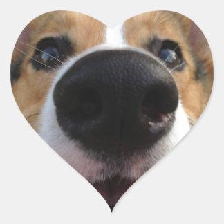 Colección de la nariz de perro del Corgi Galés Pegatina En Forma De Corazón