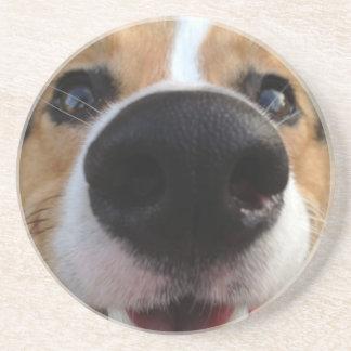 Colección de la nariz de perro del Corgi Galés Posavasos Personalizados