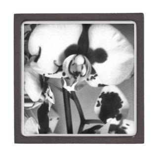 Colección de la orquídea de B&W Caja De Recuerdo De Calidad