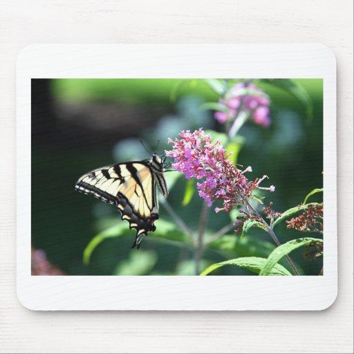 Colección de las floraciones y de las mariposas -  tapetes de raton