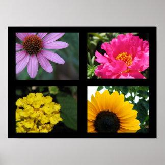 Colección de las flores del bonito póster