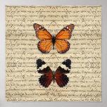 Colección de las mariposas del vintage impresiones