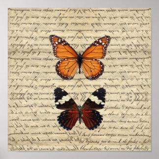 Colección de las mariposas del vintage póster