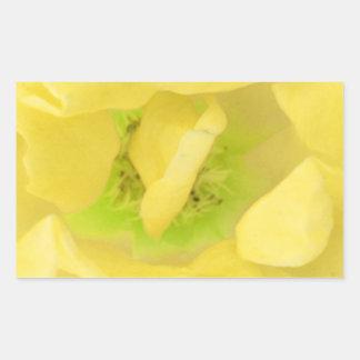 Colección de los brotes de flor de STBX Pegatina Rectangular