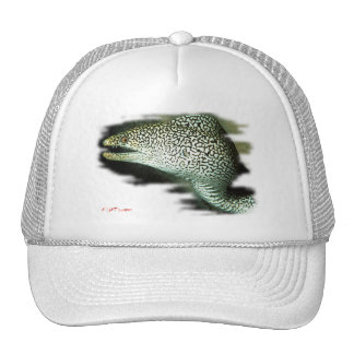 Colección de los pescados del acuario por FishTs.c Gorras De Camionero