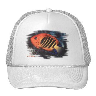 Colección de los pescados del acuario por FishTs.c Gorros Bordados