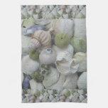 Colección de los Seashells de Alaska Toalla De Cocina