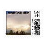 Colección de Montana