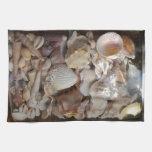 Colección de Shell Toalla De Cocina