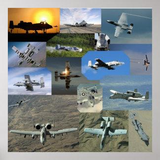 Colección de Warthog Poster