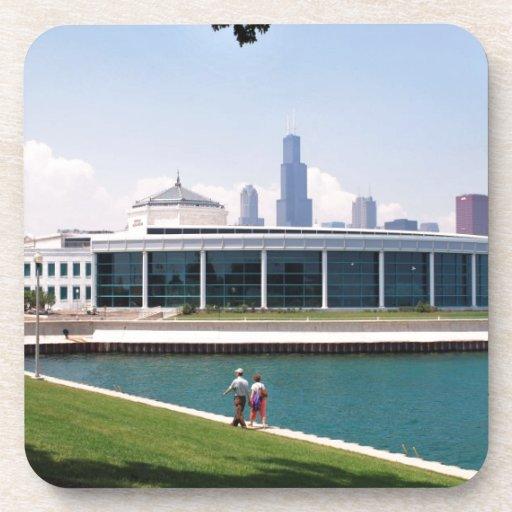 Colección del acuario de Chicago Shedd Posavaso