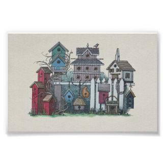 Colección del Birdhouse Cojinete
