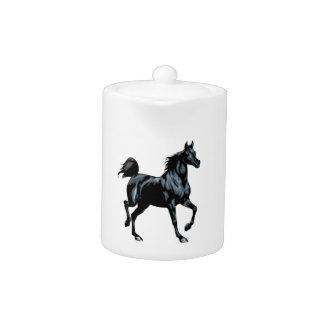 Colección del caballo