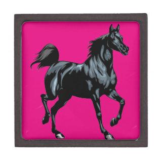 Colección del caballo cajas de regalo de calidad