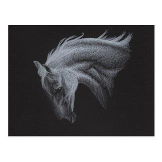 Colección del caballo del fantasma postal