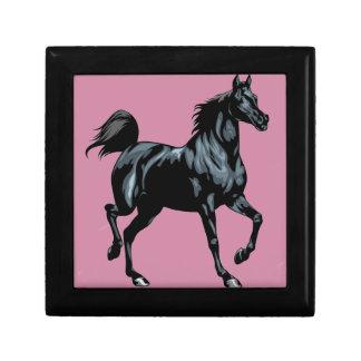 Colección del caballo joyero cuadrado pequeño