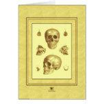"""""""Colección del cráneo """" Tarjetas"""