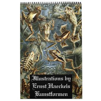 Colección del ejemplo de Ernst Haeckels Kunstfor Calendario
