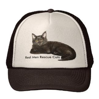 Colección del gatito del chocolate gorra