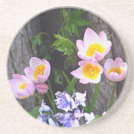 Colección del jardín posavasos manualidades