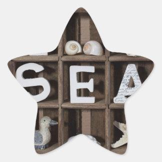 Colección del mar pegatina en forma de estrella