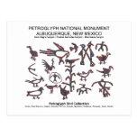Colección del pájaro del petroglifo postales