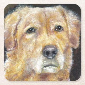 Colección del perro - práctico de costa del golden posavasos de cartón cuadrado