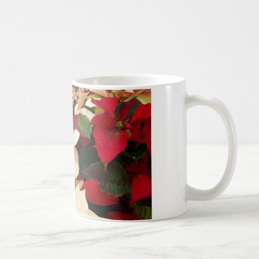 Colección del Poinsettia Taza Clásica